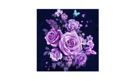 Week 45 – Purple roses