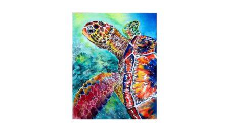 Week 29 – Colorful turtle