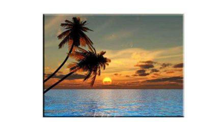 Week 31 – Sunset
