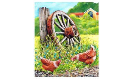 Week 32 – Chickens