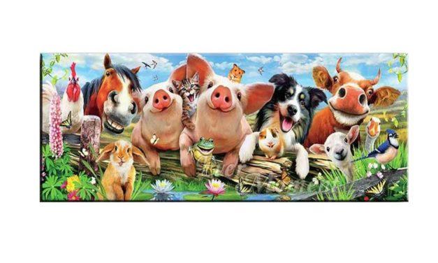 Week 39 – Happy animals