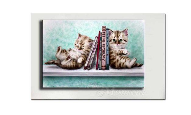 Week 40 – Cute kittens