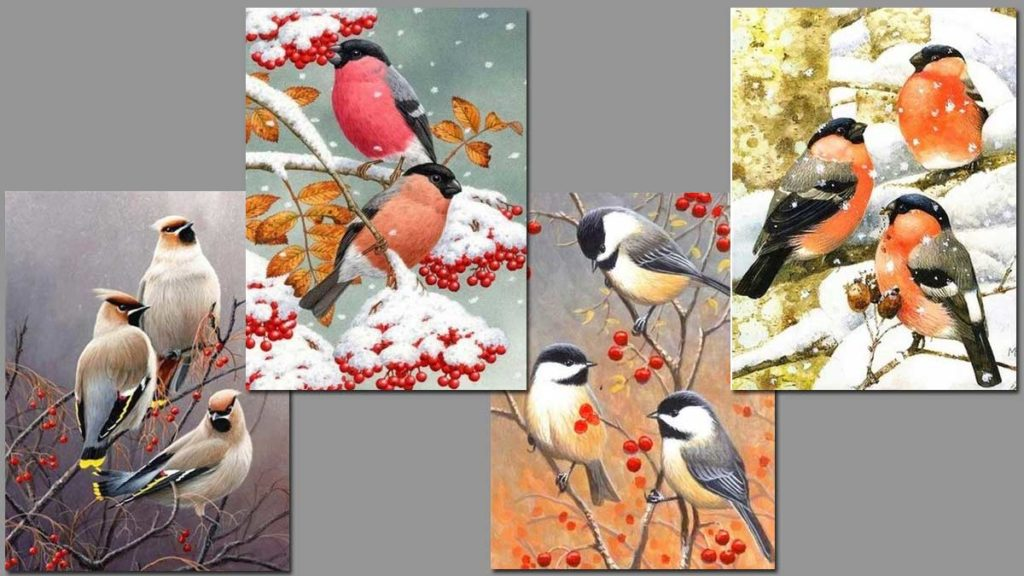 small birds in autumn and winter environment