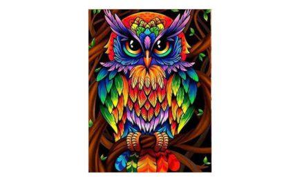 Week 2 – Colorful owl