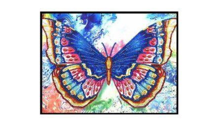 Week 5 – Fine butterfly