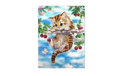 Week 20 – Hanging cat