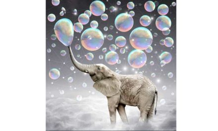 Week 44 – Bubble blowing elephant