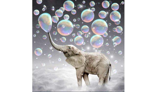 Week 44 – Bubble blowing elephant