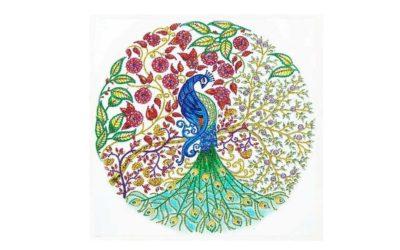 Week 45 – Peacock