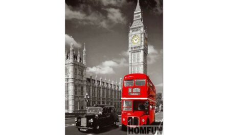 Week 3 – Double decker bus in London
