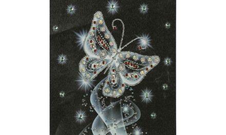 Week 2 – Silver butterfly