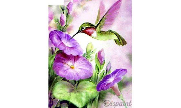 Week 14 – Hummingbird