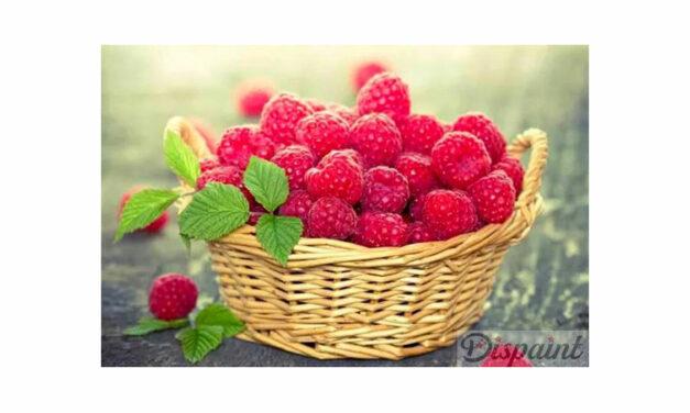 Week 26 – Basket of raspberries